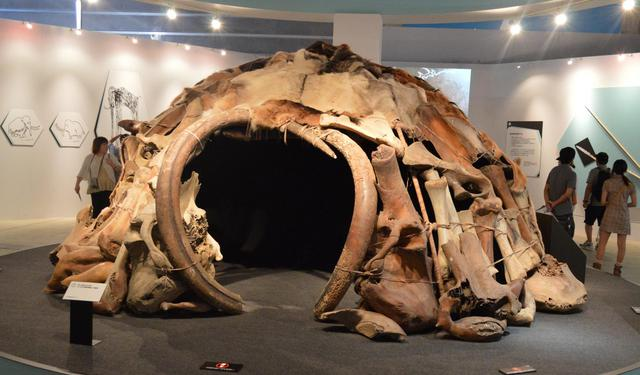 Dome shaped 25,000 year old Mammoth House
