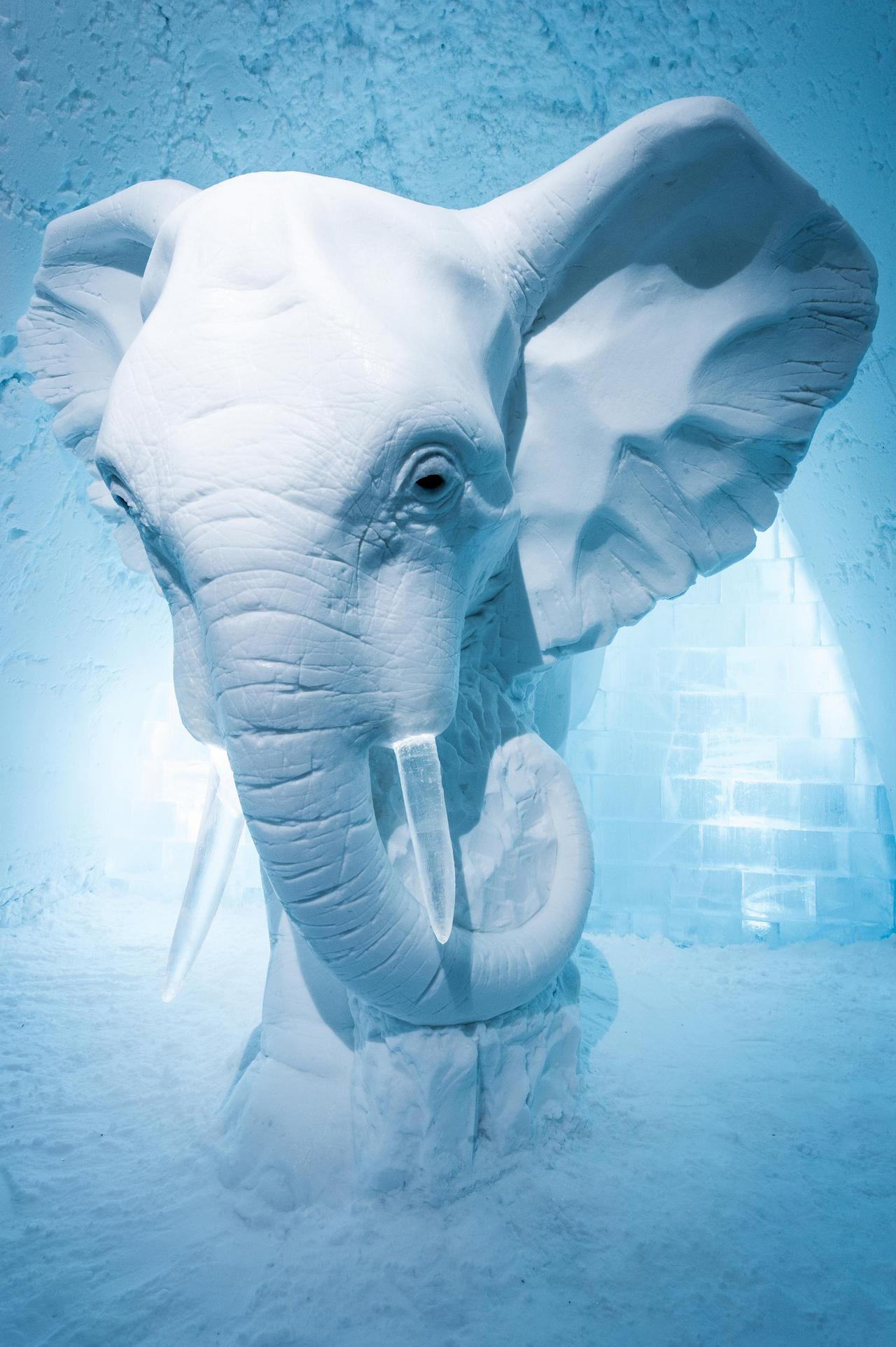 """Elephant in the Room"" snow elephant statue"